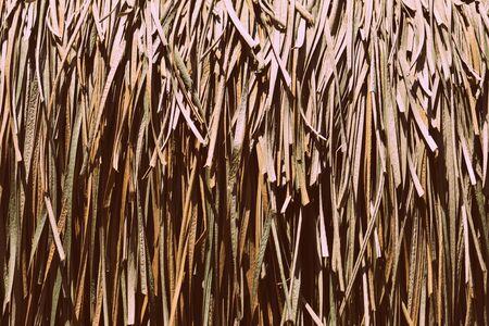 Palm roof texture close up. Retro style tropical background Banco de Imagens - 131300644