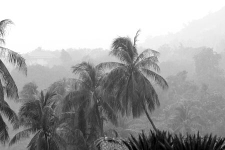 Heavy tropical rain on the coast of Koh Samui, Thailand. Black and white
