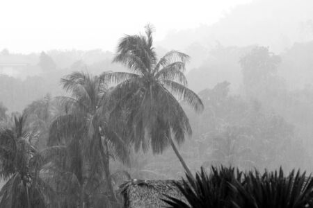 Heavy tropical rain on the coast of Koh Samui, Thailand. Black and white