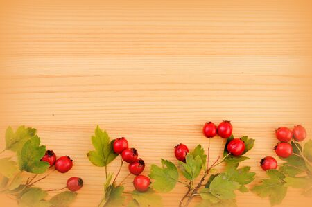 Branch with ripe hawthorn berries on a wooden background. Top view, flat lay
