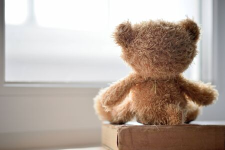 A toy bear looks out the window on a winter day. The concept of friendship, loneliness and expectation.
