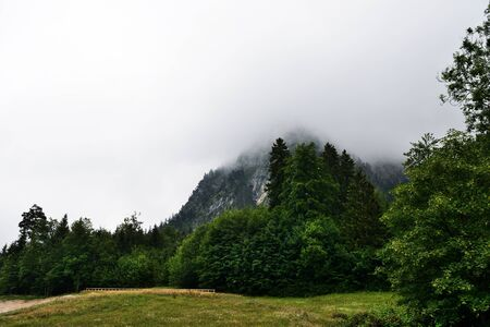 Alpine mountains in the fog on a summer cloudy day. Bovaria, Germany Stockfoto - 137653845