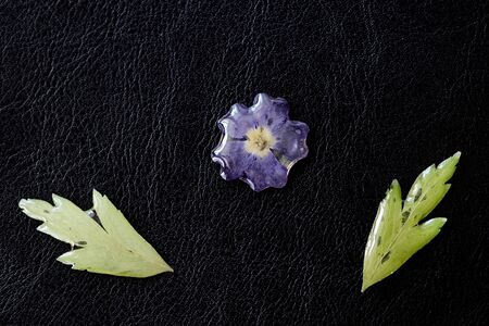 Epoxy resin coated flower and leaves closeup on a dark background. Elements for handmade jewelry made of resin and natural material. Top view, copy space Stockfoto