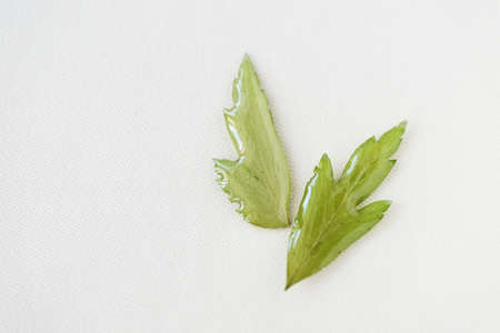 Small green leaves filled with epoxy resin on a white textile background, top view. The basis for a pendant or earrings. Handmade jewelry in the manufacturing process. Copy space