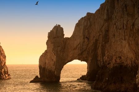 pajaros volando: El arco y la Tierra