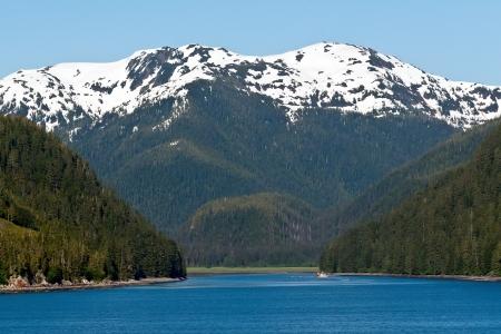 Montagnes enneigées et la ligne épaisse forêt de l'entrée du passage intérieur de l'Alaska Banque d'images - 16645319
