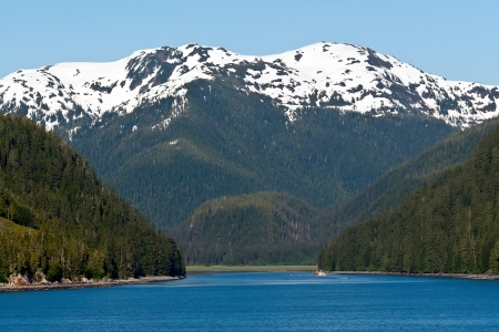 Snow capped mountains and thick forest line the inlet of the Inside Passage in Alaska Stock Photo