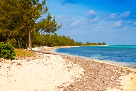 Seven Mile Beach on Grand Cayman, Cayman Islands Stok Fotoğraf - 18406176