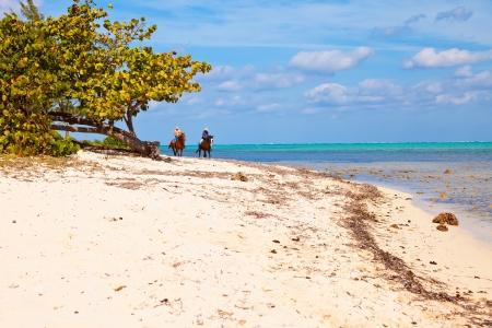 Seven Mile Beach Grand Cayman, Îles Caïmans Banque d'images - 18535145