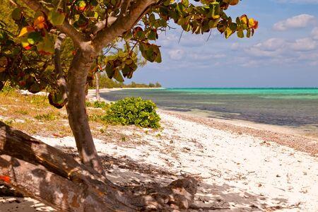 cayman: Seven Mile Beach on Grand Cayman, Cayman Islands