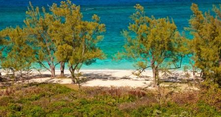 Remote tropical beach in Nassau, Bahamas