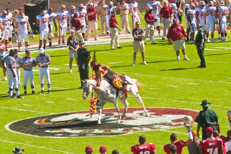 tallahassee: Tallahassee, FL - Oct  16, 2010   FSU mascot, Chief Osceola, throws down the spear at midfield, a tradition that marks the start of the college football game