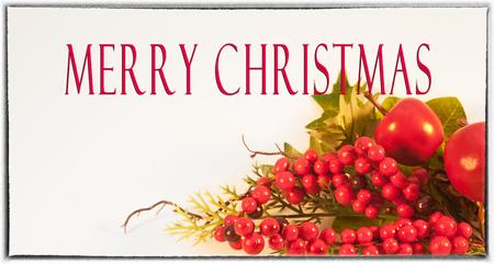 merry christmas text: Tarjeta de Navidad con Feliz Navidad texto, frutos rojos y frutos