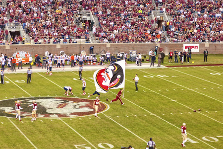 Tallahassee, FL - Nov  16, 2013   An FSU Cheerleader runs down the football field with the Seminole flag during halftime at a home football game   The FSU Seminoles went on to win the 2013 BCS National Championship  Editorial