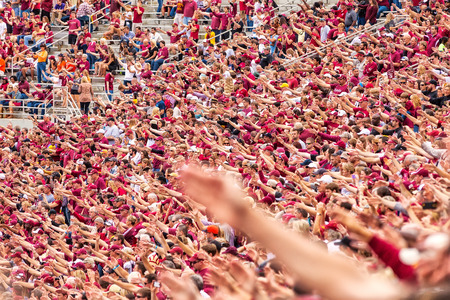 Tallahassee, FL - Nov. 16, 2013:  A packed crowd at a home FSU football game does the Tomahawk Chop when the Marching Chief band plays the War Chant.  The tomahawk chop and war chant have long been associated with the Florida State University football