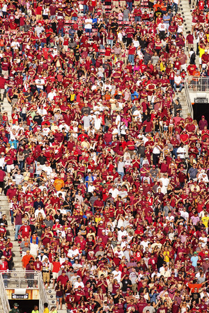 tallahassee: Tallahassee, FL - Nov. 16, 2013:  Florida State Seminole fans show their enthusiasm for the 2013 BCS National College Champions.