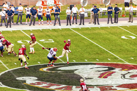 Tallahassee, FL - Nov. 16, 2013:  FSU Quarterback, Jameis Winston, throws a pass to a receiver at a home game against Syracuse at Doak Campbell Stadium.  FSU went on to win the 2013 BCS National Championship.