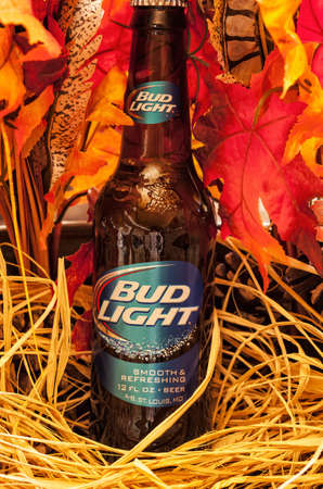 Tallahassee, FL - Nov. 7, 2014:  Bottle of Bud Light beer, from Anheuser-Busch Bottling C., rests in an autumn harvest arrangement.