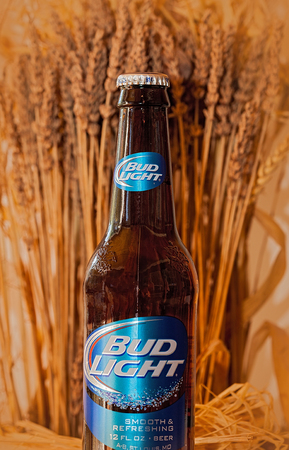 Tallahassee, FL - Nov. 7, 2014:  Bottle of Bud Light beer, from Anheuser-Busch Bottling C., with soft wheat in the background.
