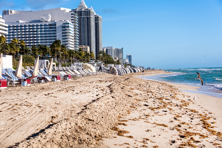 Miami Beach, FL, USA - March 13, 2015:  Miami Beach is a coastal resort city in Miami-Dade County, Florida. South Beach, comprising the southernmost 2 miles of Miami Beach, in both daytime and at nightfall,  is a major entertainment destination with hundr