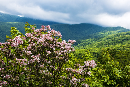 View from the Blue Ridge Parkway of the Smoky and Blue Ridge Mountains in North Carolina.