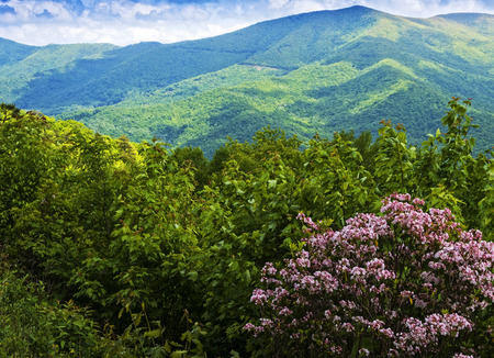 laurel mountain: Scenic view of the Blue Ridge and Smoky Mountains in western North Carolina Stock Photo
