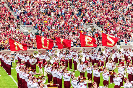 cheering fans: Tallahassee, FL - Nov. 23, 2013:  FSU Marching Chiefs band take the field during half time during a home football game at Doak Campbell Stadium.  There are 470 members in the band from almost every academic department within the university.