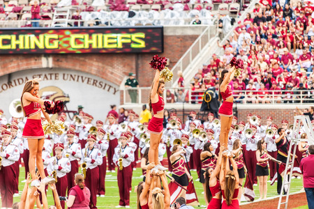 Tallahassee: Tallahassee, FL - Nov. 23, 2013:  FSU Cheerleaders warm up the crowd while the FSU Marching Chiefs take the field before a home football game at Doak Campbell Stadium in Tallahassee.