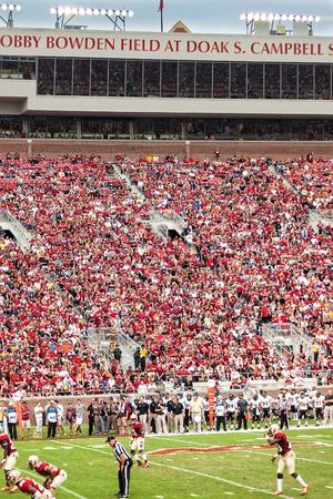 tallahassee: Tallahassee, FL - Nov. 23, 2013:  FSU football team, the Seminoles, play the Idaho Vandals before a packed crowd at Doak Campbell Stadium in Tallahassee.