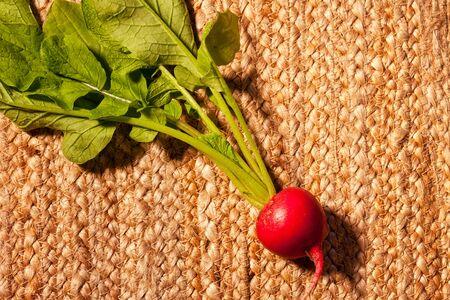 leaf vegetable: Single root vegetable, the radish with leaf stem.
