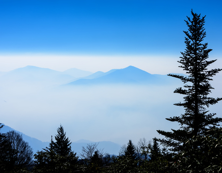 Silhouette Balsam Fur tree with the Smoky Mountains in a fog bank, and sun peeking through. 免版税图像 - 76131619