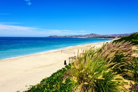 Stretch of Los Cabos Beach  in Los Cabos, Mexico