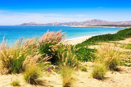 Sea of Cortez and beach in Los Cabos, Mexico