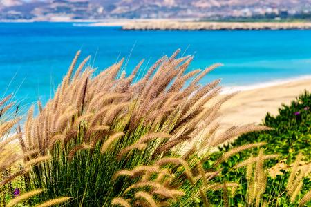 Coastline and beach in Cabo San Lucas, Mexico Stock Photo