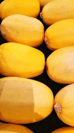 Group of yellow and fresh spaghetti squash Stock Photo