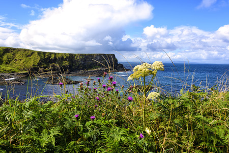 The 20-mile stretch of the Antrim Coastline in Northern Ireland.