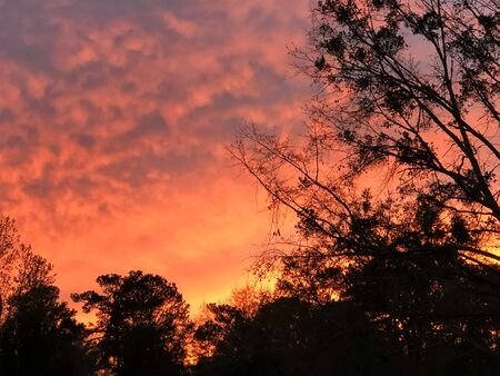Magenta glow to sunsetting in Tallahassee, Florida