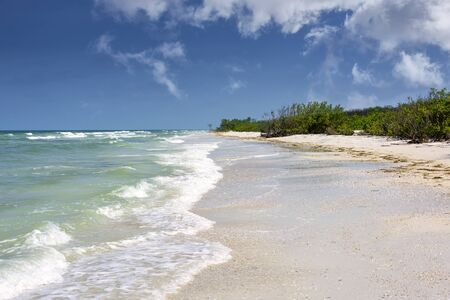 Sunny skies and beautiful beaches in Clearwater, Florida, on the Gulf of Mexico
