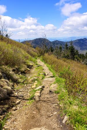 Rugged hiking path in the Smoky Mountains of North Carolina