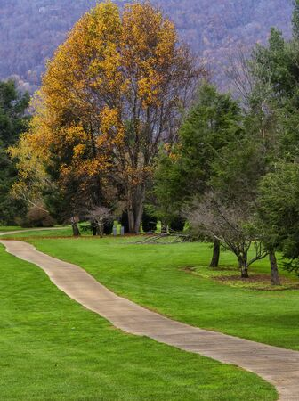 Golden colors in the season of Fall on a golf course in North Carolina