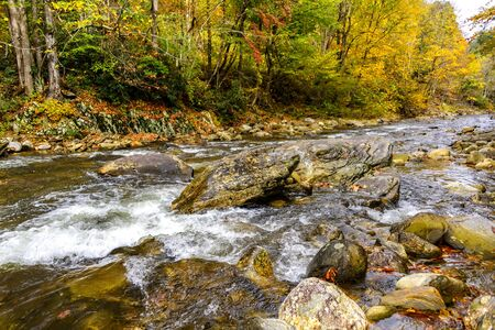 Autumn colors and a flowing stream in the mountains of North Carolina Imagens