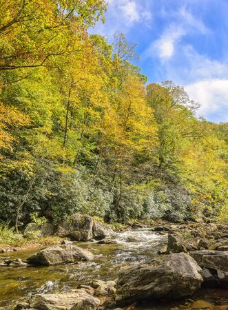 Autumn colors and a stream running through the North Carolina mountains.