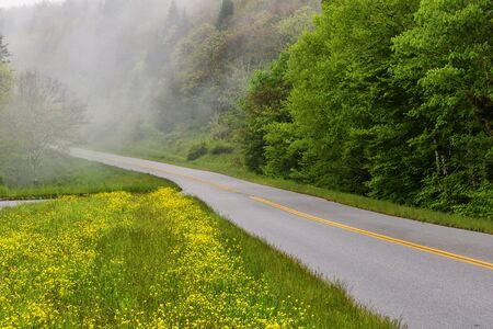 Fog settling over the Blue Ridge Parkway in North Carolina