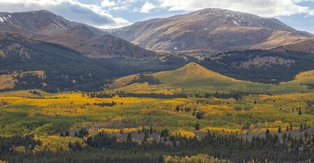 Scenic view of the landscape of Colorado with the golden aspens in Autumn.