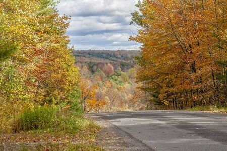 Country road in the season of Autumn Imagens