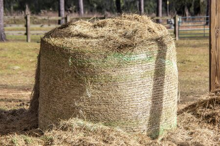 Rolled Bale of Hay in Pasture Imagens