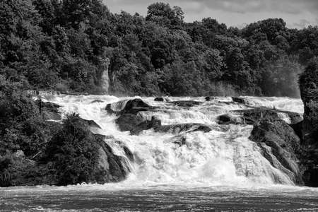 The Rhine Falls in Switzerland, in Black and White Tone 版權商用圖片