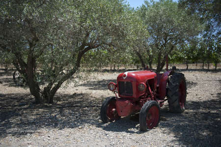 Tractor under the olive tree