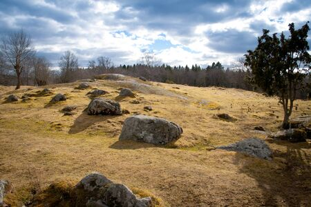 Stones on a field Stock Photo - 9951738