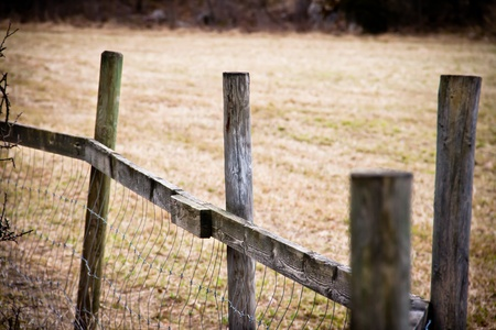 Wooden fence on a field photo